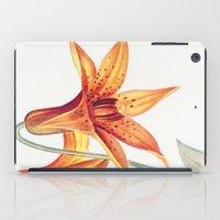 X. Vintage Flowers Botanical Print by Pierre-Joseph Redouté - Meadow Lily iPad Case