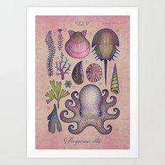 Aequoreus vita V / Marine life V Art Print