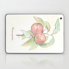 Prunus Persica (Peach) Laptop & iPad Skin