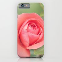 iPhone & iPod Case featuring Summer Rose by Shannon Marie