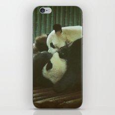 Nyatiti iPhone & iPod Skin