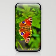 The Peacock Butterfly iPhone & iPod Skin
