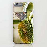 Lazy, Daisy, days of Summer iPhone 6 Slim Case