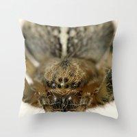 Garden/Cross Spider Throw Pillow