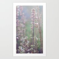 Flower Buds - III Art Print