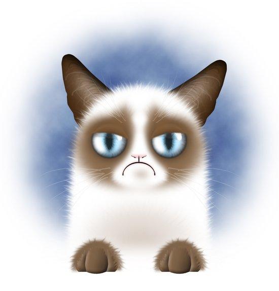 Nope (Grumpy Cat) Art Print