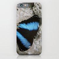Papillon II iPhone 6 Slim Case