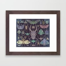 Entomologist's Wish (The… Framed Art Print