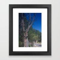Grand Canyon Tree Framed Art Print