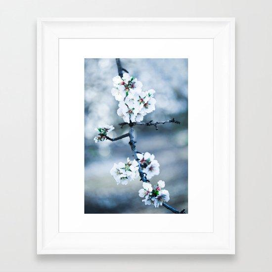 Blossoms Framed Art Print