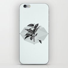 Still Life No.1 iPhone & iPod Skin