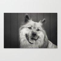 A Sepia Portrait Of A Do… Canvas Print