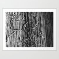 Bark 2015 Art Print