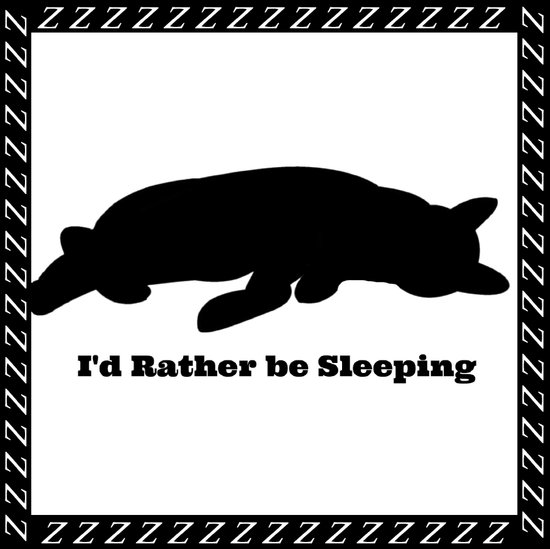 Cat nap w/border Art Print