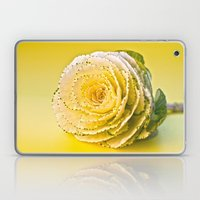 Cabbage Rose  Laptop & iPad Skin