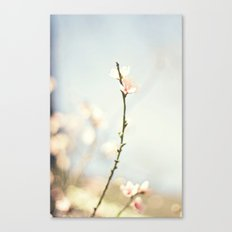 jutting bloom Canvas Print