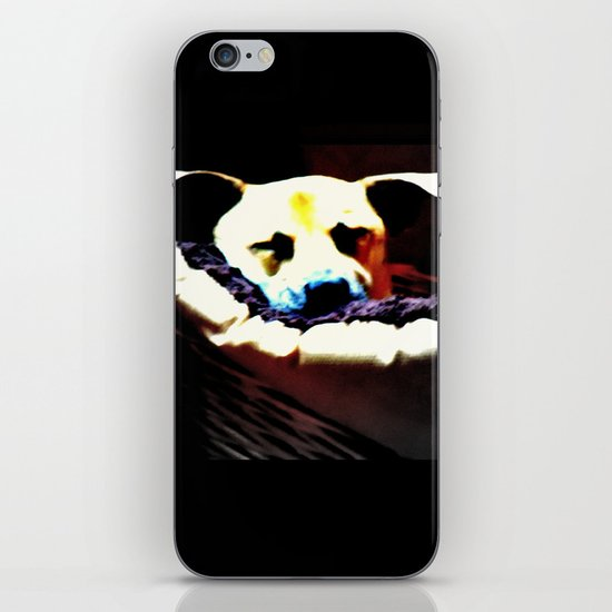 sleeping puppy stuck in basket iPhone & iPod Skin