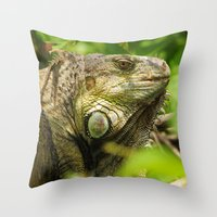 Costa Rican Iguana Throw Pillow