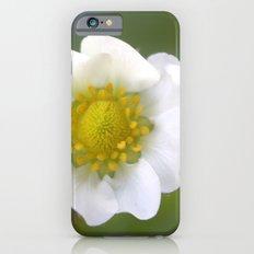 white strawberry flower. floral photo art. iPhone 6s Slim Case