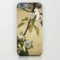 Pear Blossom iPhone 6 Slim Case