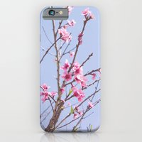 iPhone & iPod Case featuring Portuguese Blossoms by Yolene Dabreteau Photography