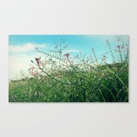 Field Wild Flowers Canvas Print