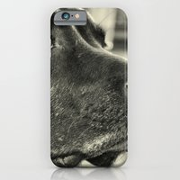 iPhone & iPod Case featuring Really? by Roger Wedegis