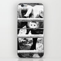 Pig Farm 2 iPhone & iPod Skin