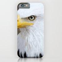 Bald Eagle iPhone 6 Slim Case