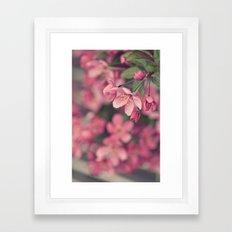 in bloom Framed Art Print