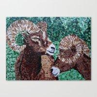 Rams Canvas Print