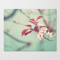 Dream in mint Canvas Print