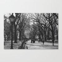 Oh, Central Park Canvas Print