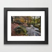 Autumnal Woodland. Padle… Framed Art Print