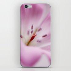 Pink Softness iPhone & iPod Skin