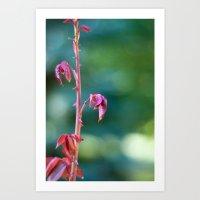 Baby Rose Leaves Art Print