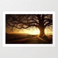 Treehugger Art Print