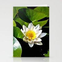 Pond Lilly Stationery Cards