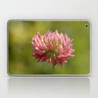 Pink Clover 5033 Laptop & iPad Skin