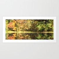 Beaver Dam Art Print