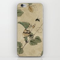Fable #5 iPhone & iPod Skin