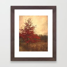 Red Oak Framed Art Print