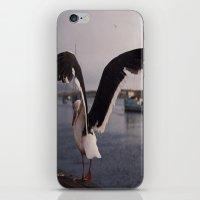 Rat Of The Ocean iPhone & iPod Skin