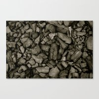 Coal Canvas Print