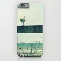 Sea gull Slim Case iPhone 6s