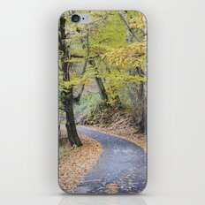 Into the autumn woods iPhone & iPod Skin