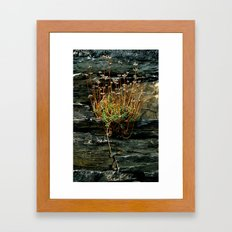 The Power of Nature  Framed Art Print