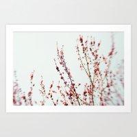Red Blossom 2 Art Print