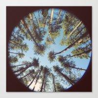 look up & GET LOST Canvas Print