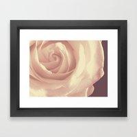 Roses Are White Framed Art Print